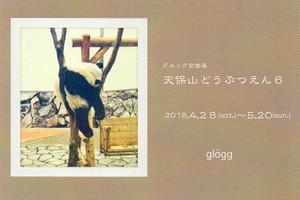 Img029_5